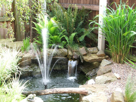 water feature: Water Feature