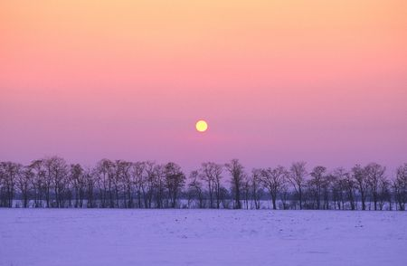 Sunset in  winter evening in  steppe zone