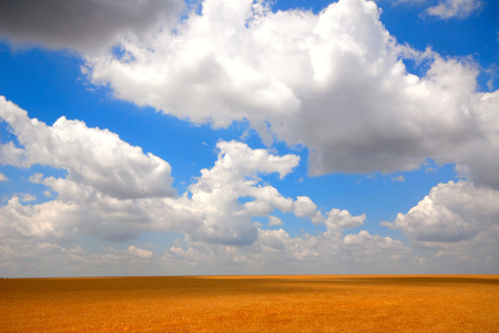 landscape  field and clouds
