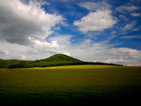 landscape mountain covered with a wood on background sky with clouds photo