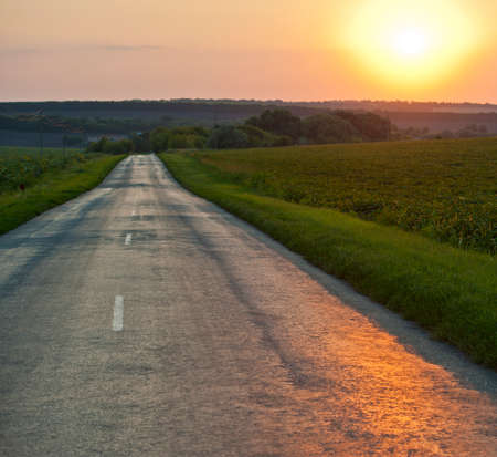 village road and the setting sun, summer evening Stock Photo