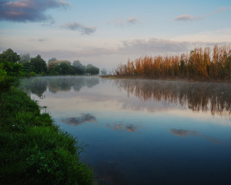 forest along the banks of the river, spring morning and mist over the surface of the water photo