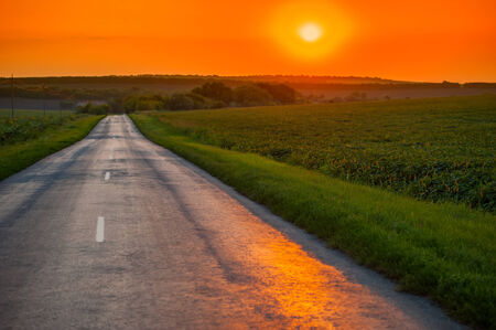 road in the countryside in the field against the setting sun, Ukraine, Europe photo