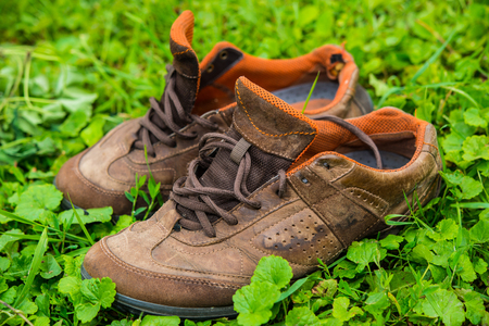 Old worn sports shoes on a background of green grass  photo