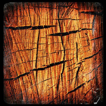 sawn: cracks in sawn tree trunk Stock Photo