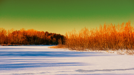 frozen river and forest in the afternoon, winter landscape photo