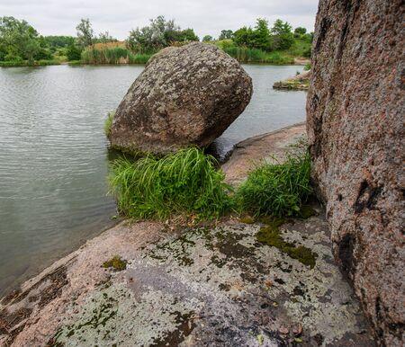 flowering plants: granite stones flowering plants on the river