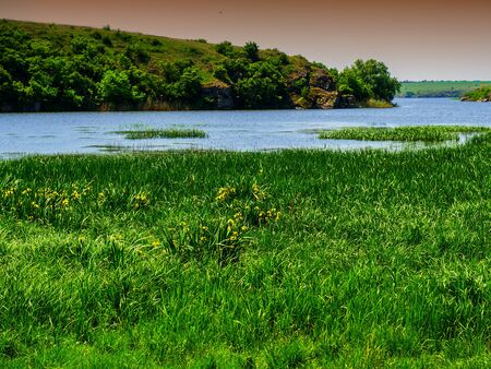 floodplain: landscape in the countryside of the floodplain of the river, spring season