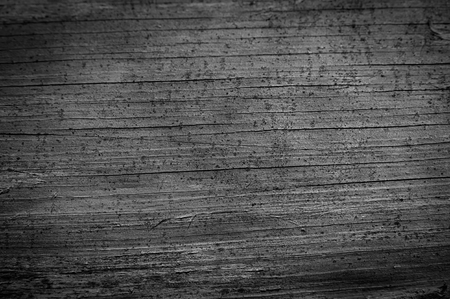 old photo: Surface of an old wooden board. Monochrome photo. Background for web design