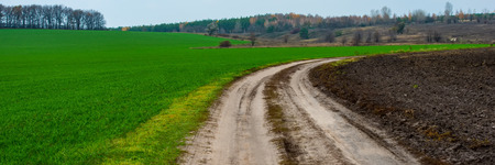 dirt road between a plowed field and a field of winter wheat in hilly terrain. Web banner for your design. Ukraine. Europe. Stok Fotoğraf
