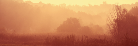 Rustic meadow in the autumn fog in an early sunny morning. Web banner for your design. 스톡 콘텐츠