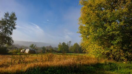 Morning autumn landscape on a meadow in the countryside. Amazing beautiful landscape. Ukraine. Europe.