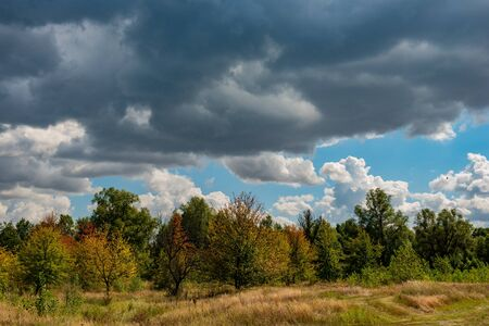 Autumn October Deciduous Forest on Blue Sky Background and White Clouds. Ukraine. Europe. Stock Photo