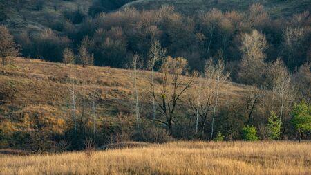 Autumn October Deciduous Forest in the Hills. Panoramic landscape. Ukraine. Europe. Stock Photo