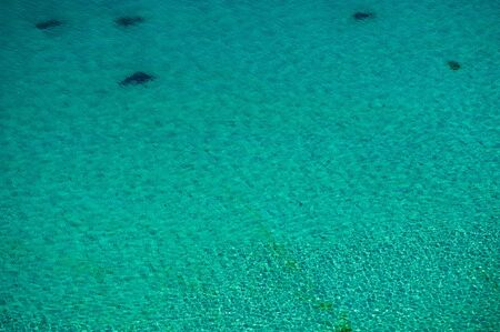 water surface in the sea on a sunny day in shallow water. Summer season, august.