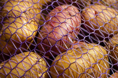 potato root vegetables lie in a grid in the open air. Cooking food.