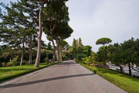 Walk in the Vatican Gardens in Rome, Italy Stock Photo - 8922929