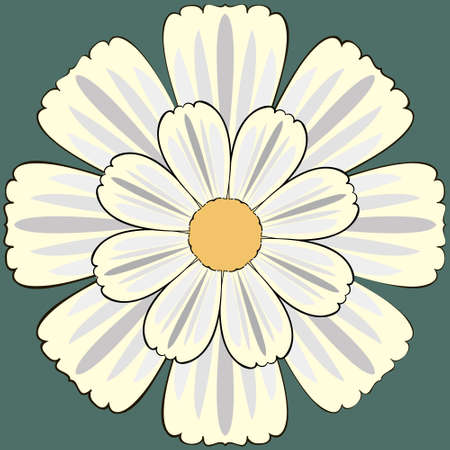 camomiles: Flower seamless Pattern with Camomiles. Easily editable vector image