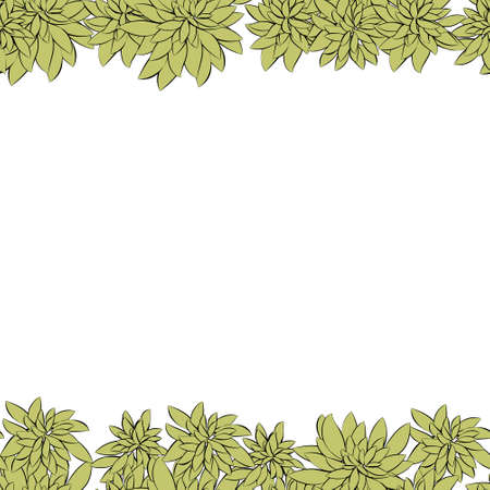 Fresh spring green grass leaves frame template with curling blank sheet paper design vector illustration