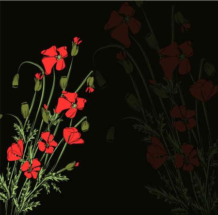 Ilustración de vector de brillante ramo de amapolas rojas