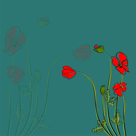 Summer bright background with poppies