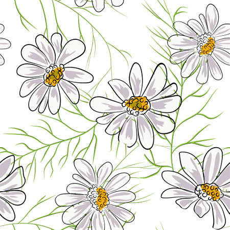 Seamless pattern with chamomile, camomile flowers on white background