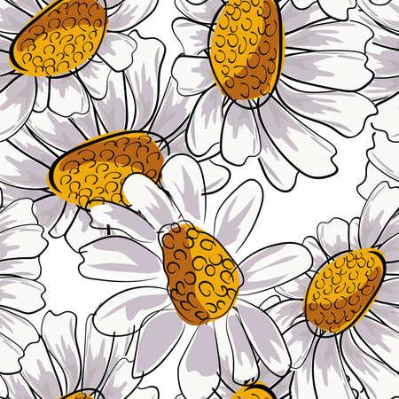 Camomille transparente pour la conception de décoration. Imprimé botanique floral. Camomille marguerite blanche. Motif floral de vecteur. Modèle sans couture de fleur.
