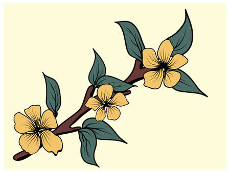 Magnolia branch with leaves in japanese style on white background. Floral background. Vector isolated illustration