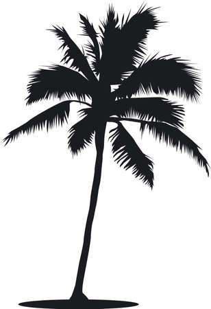 Palm tree silhouette Stock Vector - 17722106