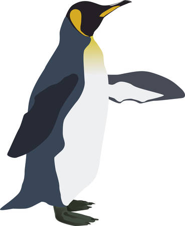 An emperor penguin in profile shows with the wings