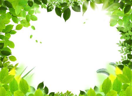 Natural design template. Naturel heart frame. Beautiful frame