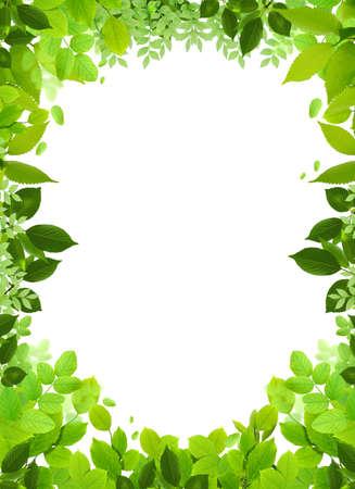 Natural design template.Naturel heart frame.Beautiful frame Stock Photo - 4768358