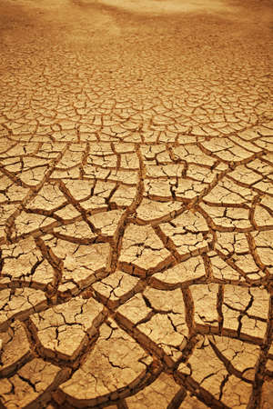 waterless: Cracked earth background. Cracked and dried mud texture Stock Photo