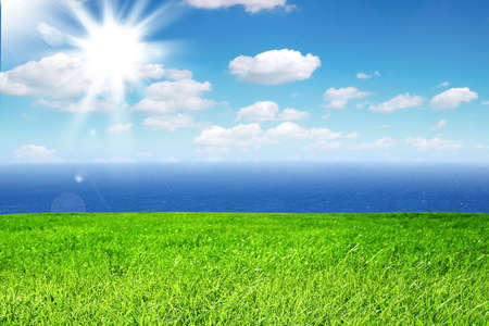 Fresh green grass on bright sunny day and sea in the background photo