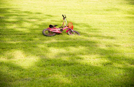 Pink bike falling on green grass in the park.