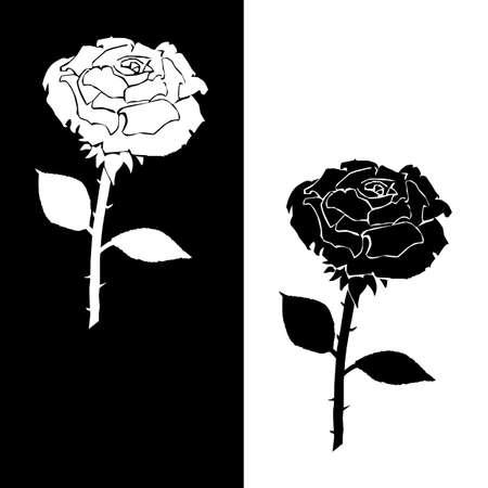 Stencil rosas blancas y negras. Vector