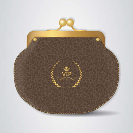 clasp: VIP Brown leather purse with gold clasp. Vector