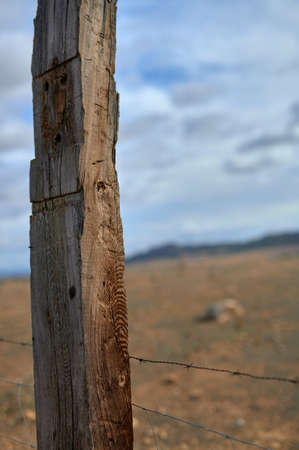 detail of a part of a wooden fence very deteriorated by the weather fencing a farm with wild cattle on an ocher ground and a cloudy and blue sky