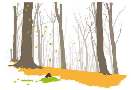 Forest in autumn Vector