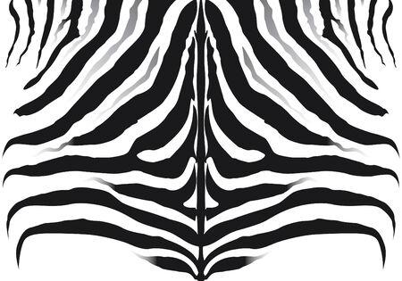 Zebra pattern background texture