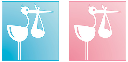 Stork carrying baby boy and girl Illustration