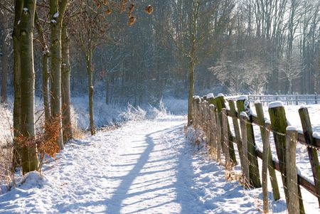 Fence in winter landscape  photo