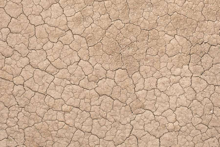 Close up to dried cracked dirt that can be used as background Imagens - 42069332