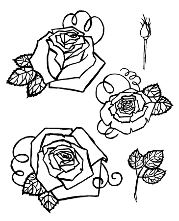 Watercolor Hand-painted Set of Vector roses