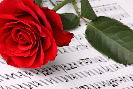red sheet: red rose on music sheet. Stock Photo