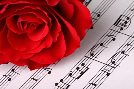 single story: red rose on music sheet. Stock Photo