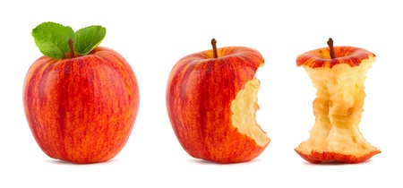 row of red apples on white background photo