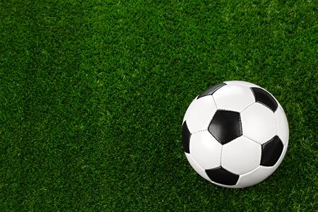 soccerball: a soccerball on a green meadow Stock Photo