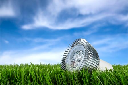 Buld conduit sur l'herbe en face de ciel bleu Banque d'images - 26055102