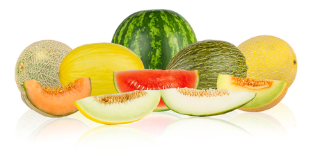 collage of different melon tyes on white background